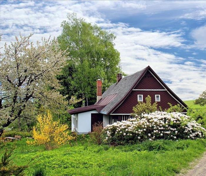 A cottage in the spring, plants blooming all around it, the blue sky behind.
